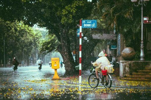 Cơn mưa bất chợt mùa thu tại Hà Nội